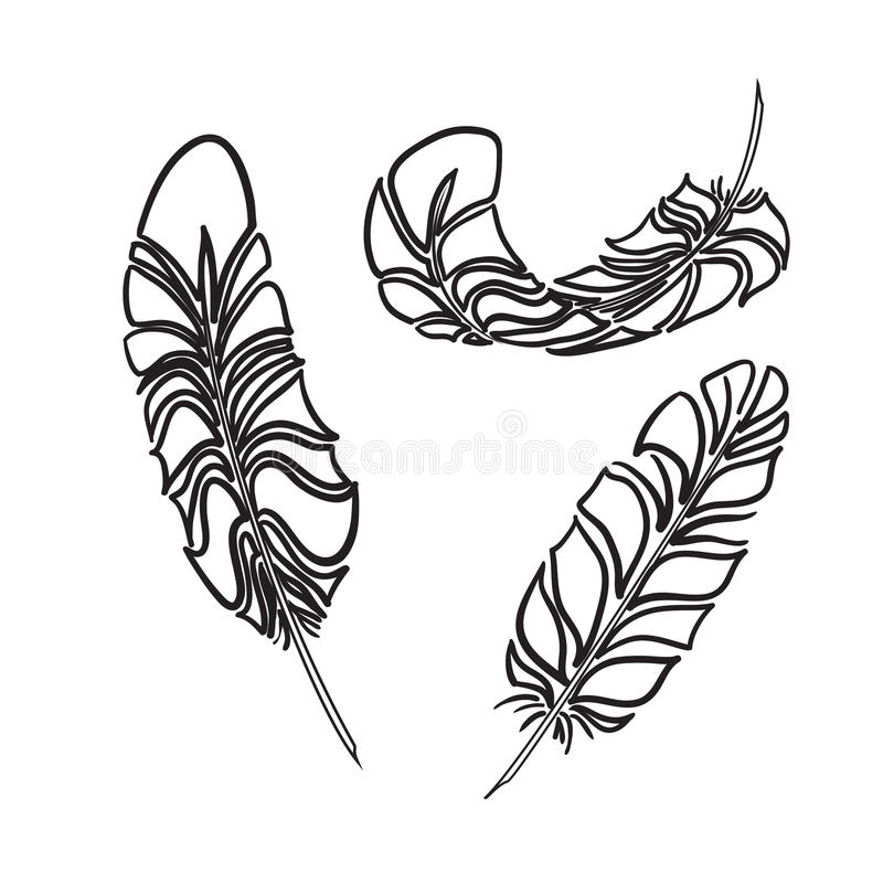 Feathers sketch style. Vector illustration royalty free illustration