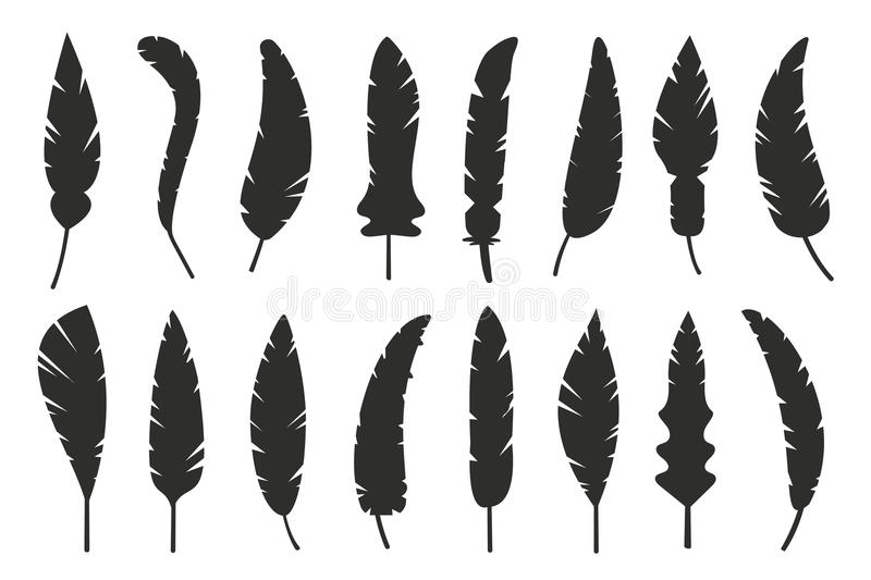Feathers vector black and white silhouette stock illustration
