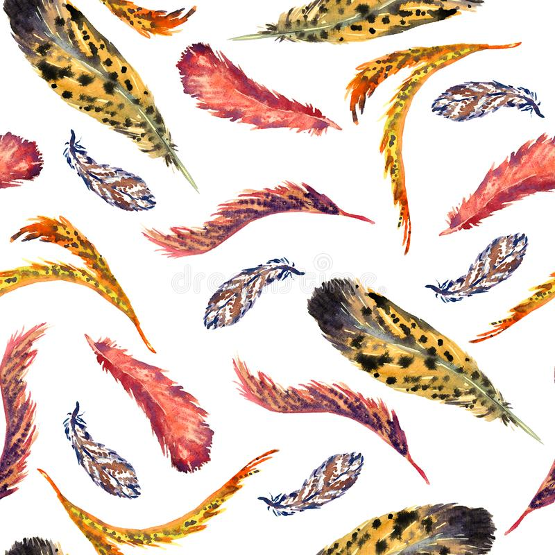 Feathers vaariety collection, white background stock illustration