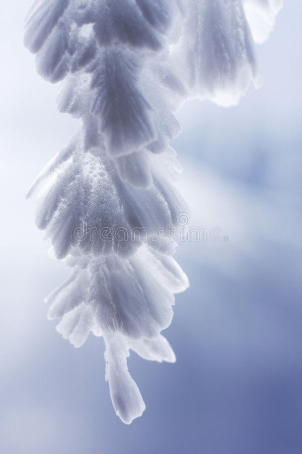 Download Feathery Icicles # 3 stock photo. Image of deposits, feathery - 5259922