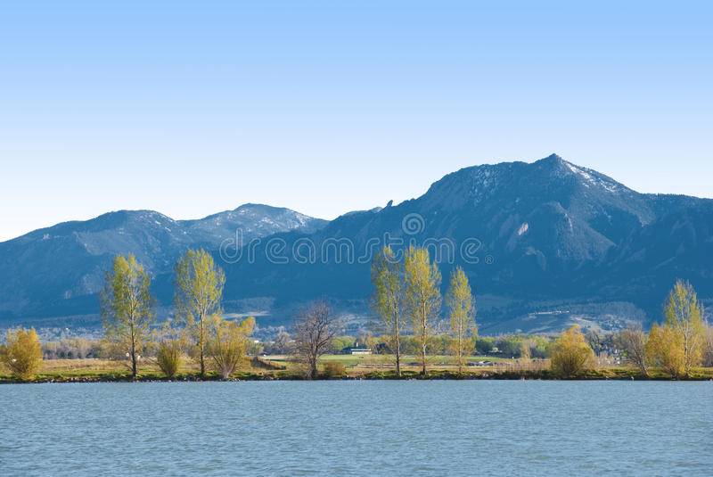 Feathery Trees, Lake Shore And Blue Mountains Royalty Free Stock Photography