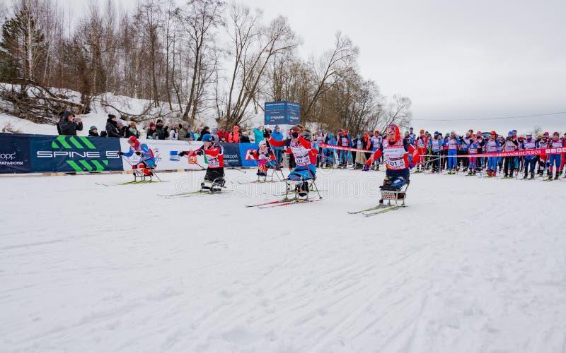 11 Feb 2017 Art-Veretevo Estate annual ski race Nikolov Perevoz 2017 Russialoppet ski marathon. Paralympic race. royalty free stock image