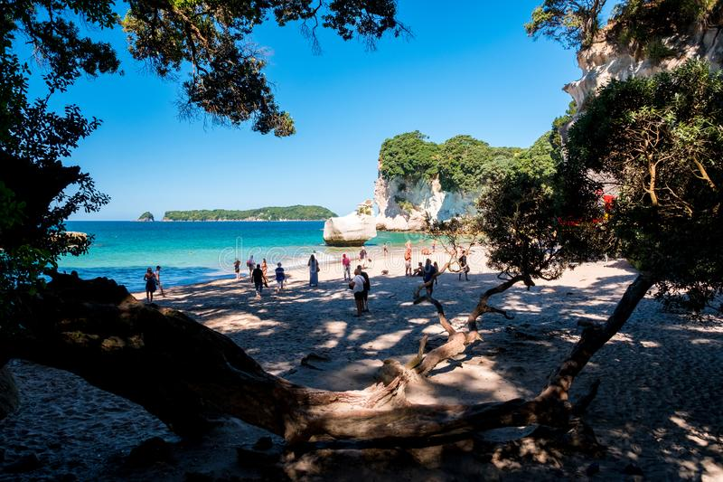 2019 FEB 19, New Zealand, Coromandel -  Chathdral cove the travelling destination in a beautiful day royalty free stock images