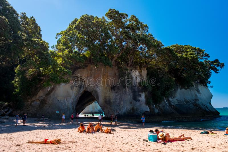 2019 FEB 19, New Zealand, Coromandel -  Chathdral cove the travelling destination in a beautiful day stock photos