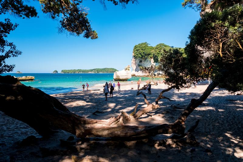 2019 FEB 19, New Zealand, Coromandel -  Chathdral cove the travelling destination in a beautiful day stock photo