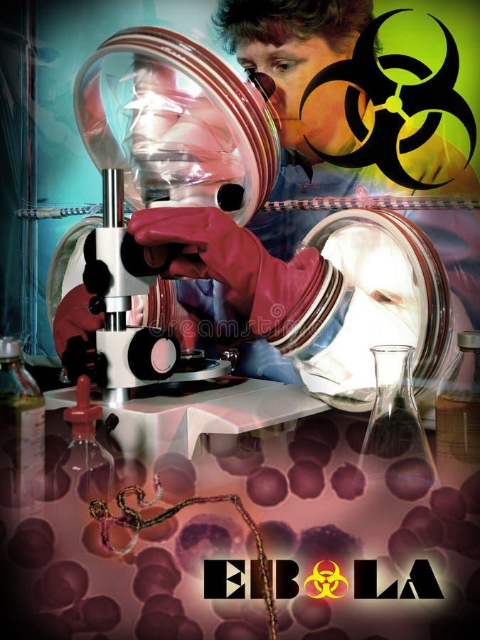 Febbre emorragica di ebola - epidemia - rischio biologico fotografie stock libere da diritti