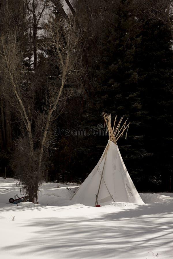 FEBRUARI 14, 2019 - OMRÅDE för MONTROSE/TELLURIDE COLORADO - vit indisk tipi i snö - Colorado fotografering för bildbyråer