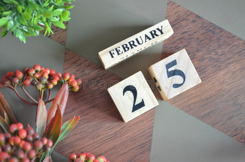 25 February for background. 25 February for background, calendar design. Date royalty free stock images