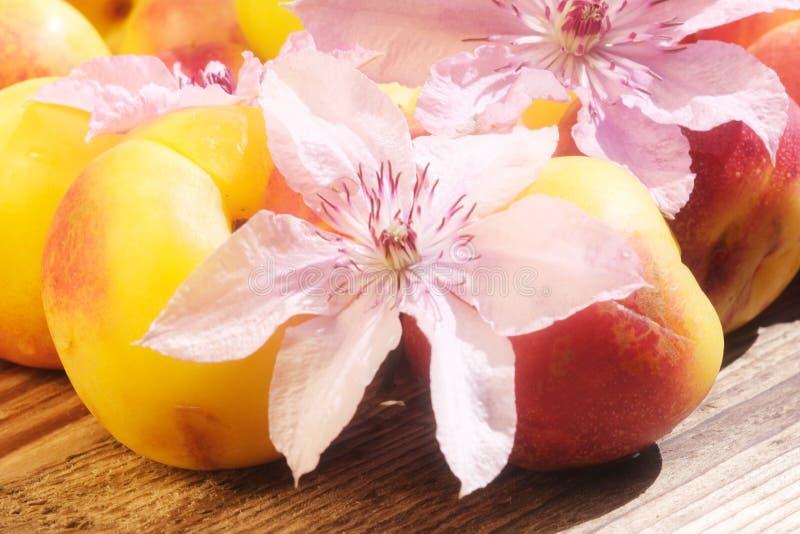 Fechamento Nectarino Numa Mesa De Madeira imagens de stock