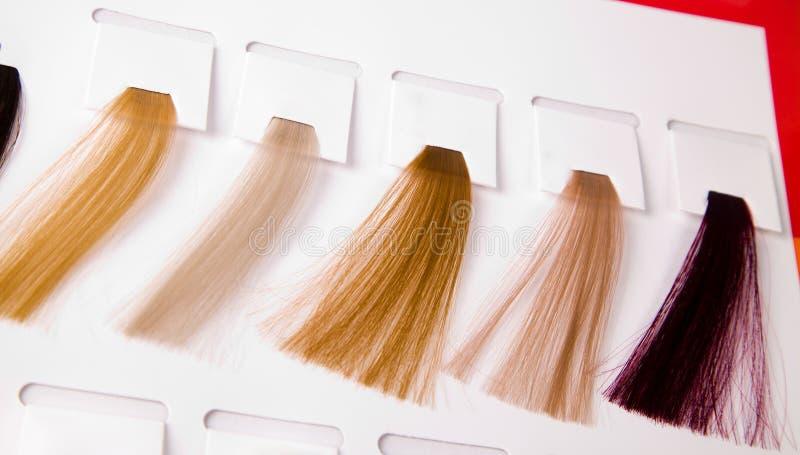 Fechamentos tingidos do cabelo fotos de stock