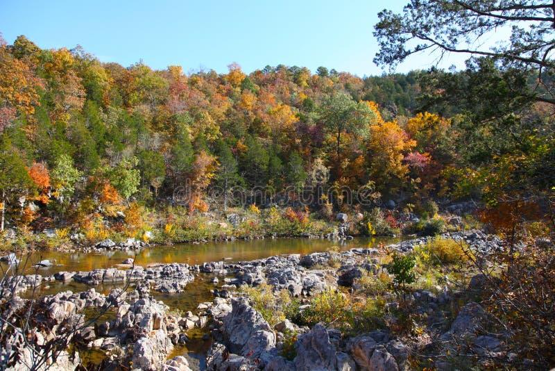 Fechar-ins do parque estadual do encerramento de Johnson no outono fotografia de stock royalty free