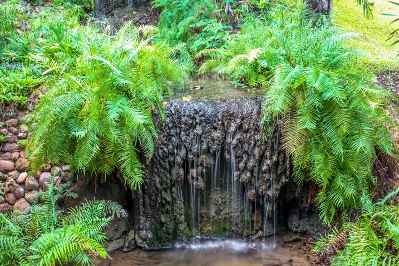 Feche acima da cachoeira pequena no jardim imagens de stock