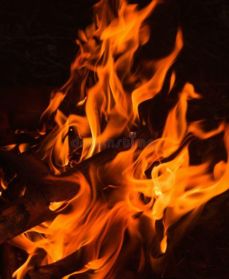 Feche acima da chama de uma fogueira foto de stock