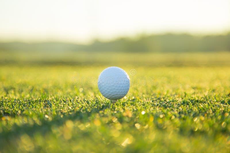 Feche acima da esfera de golfe no T foto de stock