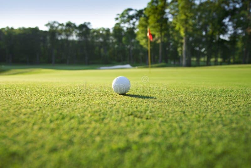 Feche acima da esfera de golfe no verde fotografia de stock