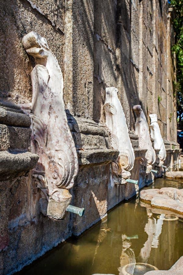 Feche acima da fonte de Martinho, em Castelo de Vide, Portugal foto de stock