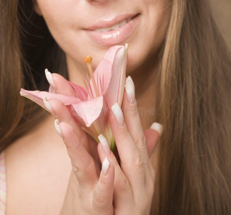 Feche acima da foto das mãos da mulher que guardam o lírio da flor foto de stock royalty free