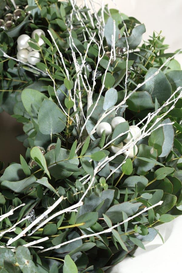 Feche acima da grinalda do eucalipto fotos de stock royalty free