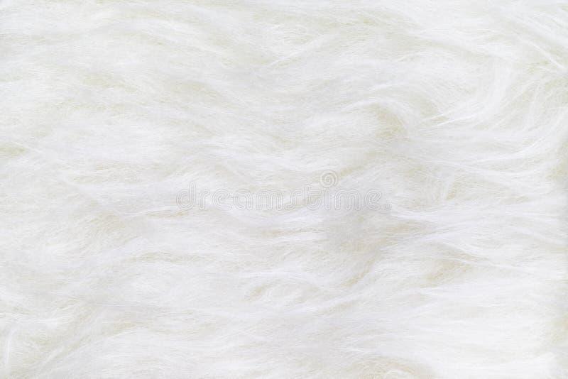 Feche acima da ideia superior da superfície limpa branca do fundo da textura da pele fotografia de stock royalty free