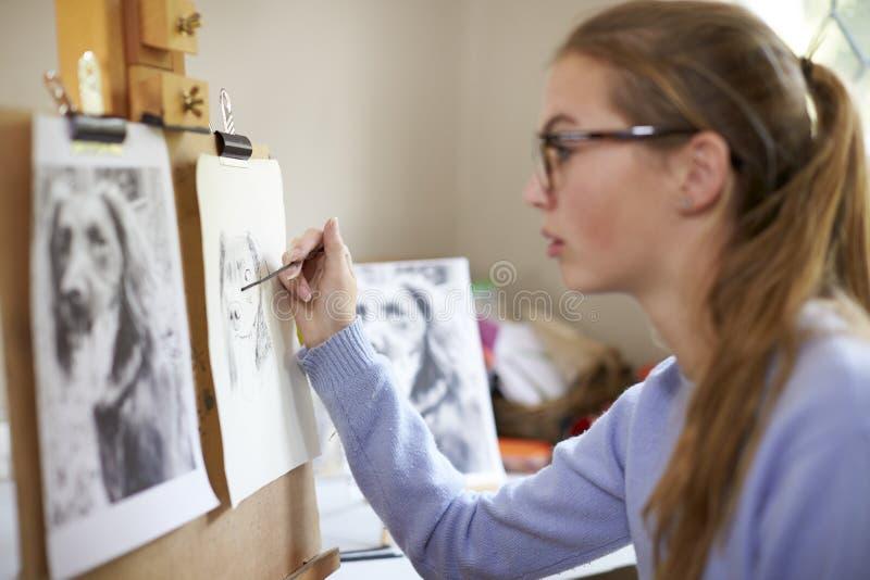 Feche acima da imagem adolescente fêmea do desenho de Sitting At Easel do artista do cão da fotografia no carvão vegetal fotos de stock