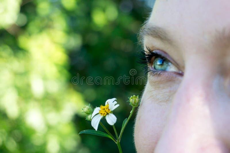 Feche acima da imagem macro de uns olhos azuis verdes isolados de uma cara da jovem mulher com uma flor da margarida fotos de stock