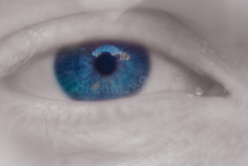 Feche acima da imagem macro do olho humano imagem de stock royalty free