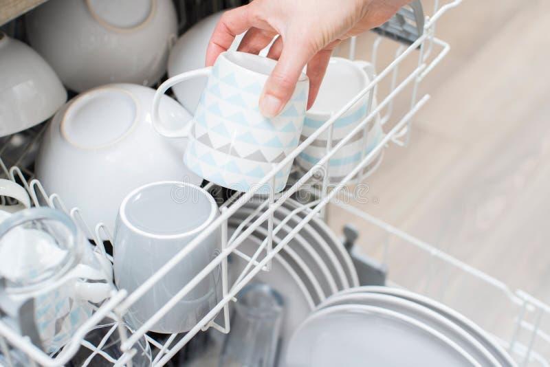 Feche acima da louça da carga da mulher na máquina de lavar louça foto de stock royalty free
