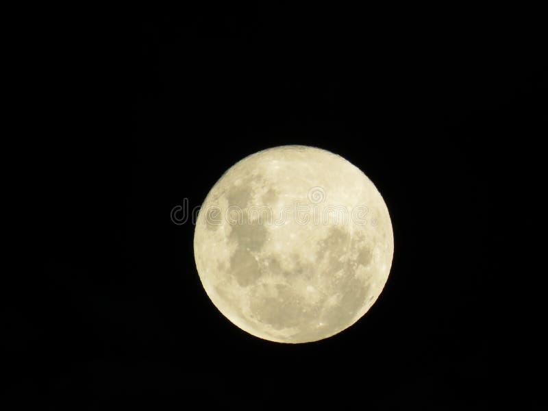 Feche acima da lua fotografia de stock