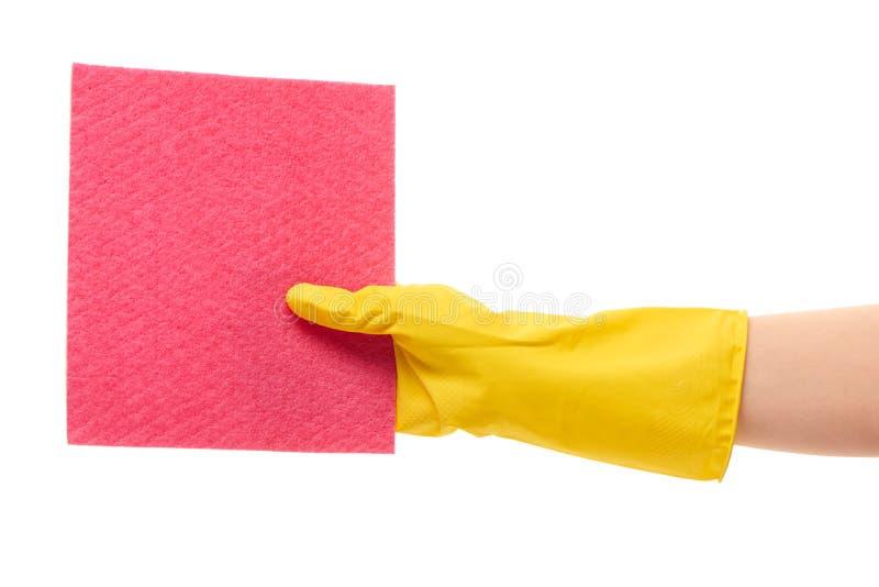 Feche acima da mão fêmea na luva de borracha protetora amarela que guarda o pano cor-de-rosa foto de stock