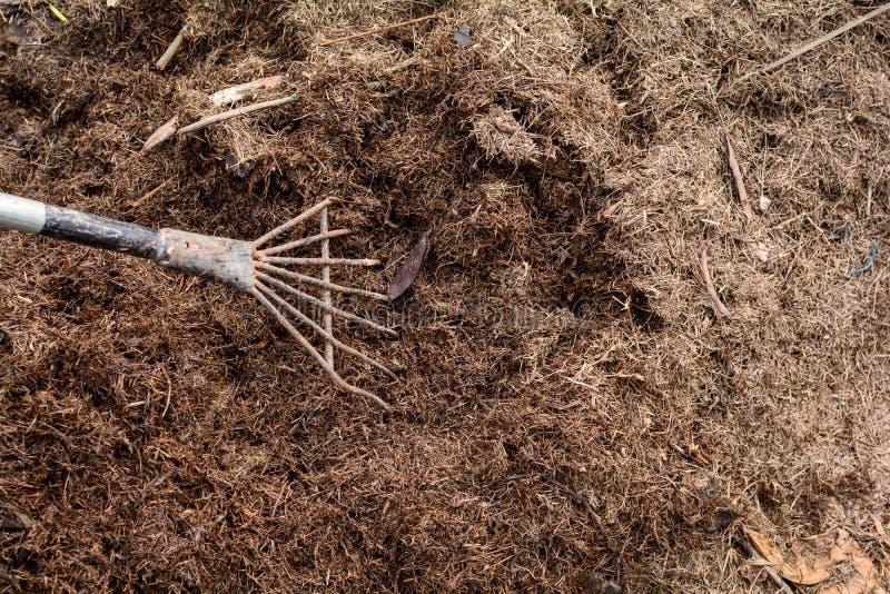 feche acima da natureza do cultivo orgânico do adubo do solo imagens de stock