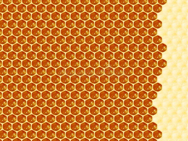 Feche acima da opinião as abelhas de trabalho em pilhas do mel fotografia de stock