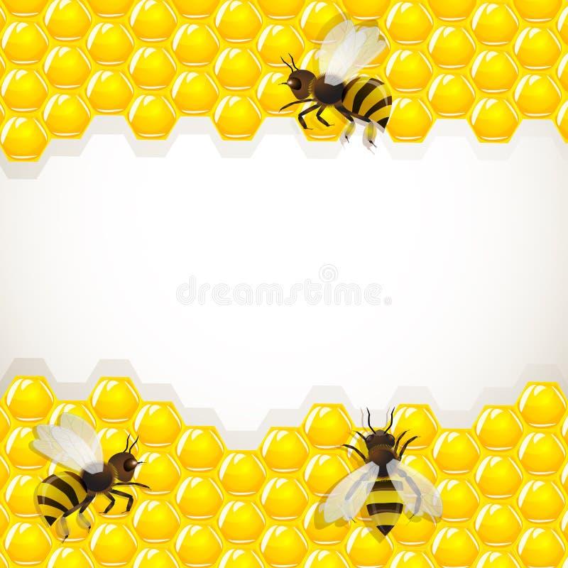 Feche acima da opinião as abelhas de trabalho nos favos de mel ilustração stock