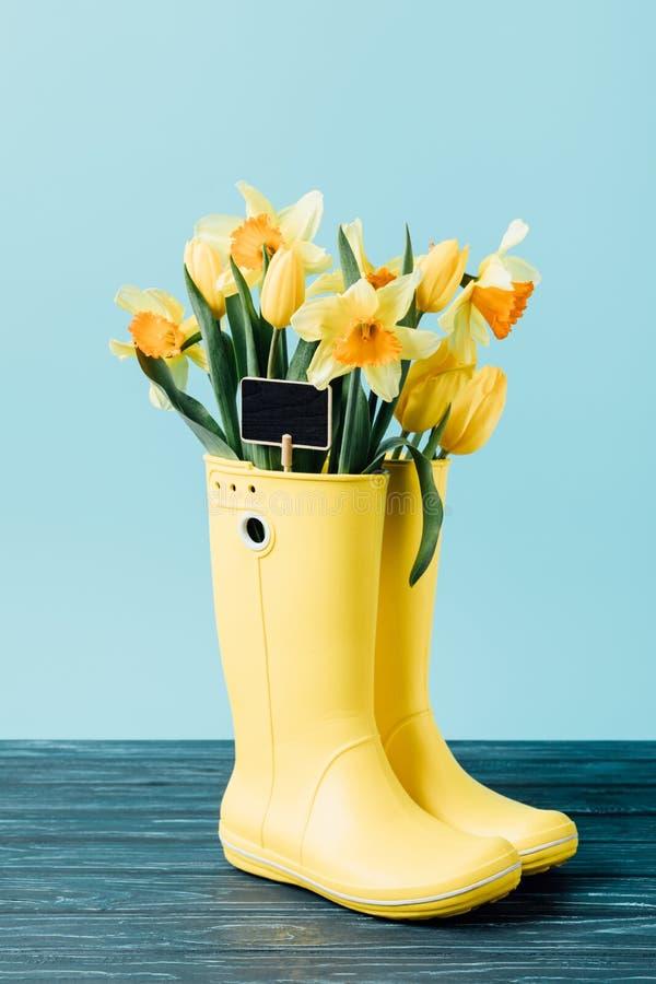 feche acima da vista de tulipas e de flores amarelas do narciso com o quadro vazio nas botas de borracha fotografia de stock royalty free