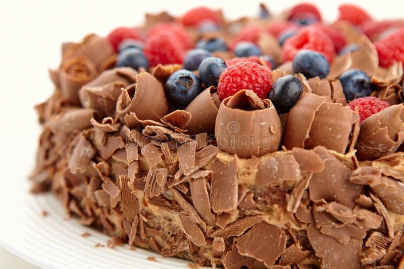 Feche acima da vista do bolo de chocolate com bagas e chocolate selvagens fotos de stock