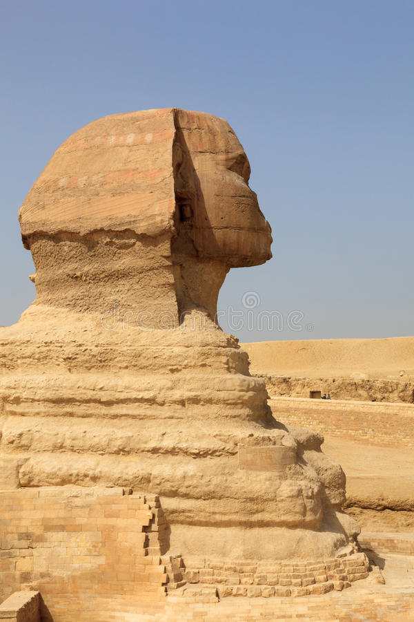 Feche acima da vista lateral da esfinge o Cairo fotografia de stock royalty free