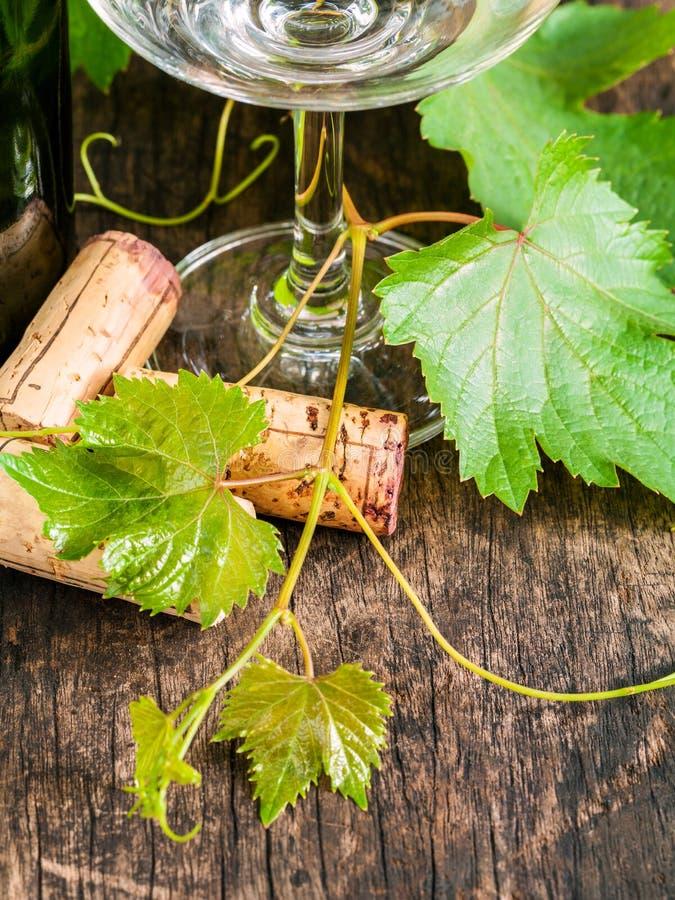 Feche acima das cortiça do vinho com vinha e folhas no tabl de madeira imagem de stock
