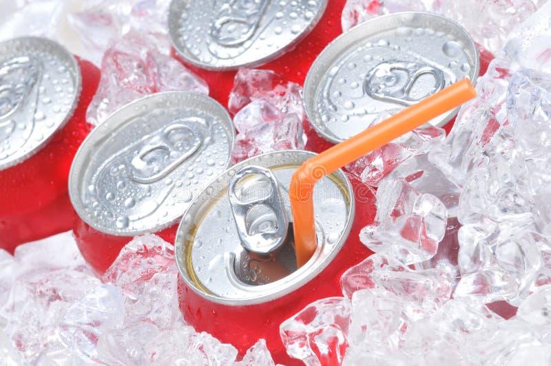 Feche acima das latas de soda no gelo fotografia de stock royalty free