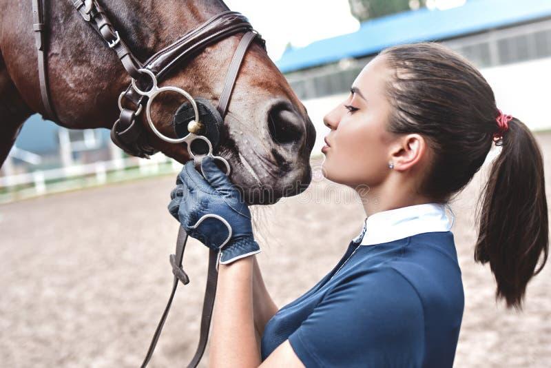 Feche acima das mãos da mulher do jóquei que abraçam um cavalo Trocas de car?cias da mo?a seu cavalo no est?bulo Conceito equino  foto de stock
