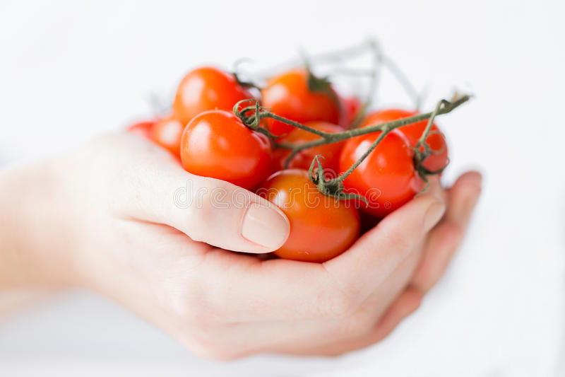 Feche acima das mãos da mulher que guardam tomates de cereja imagem de stock