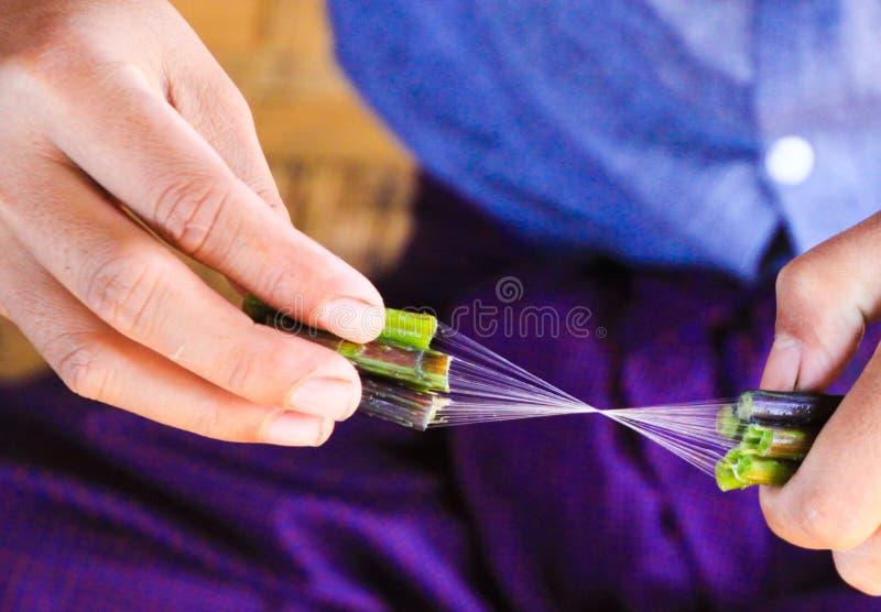Feche acima das mãos do homem do birmanês que fazem a linha de seda da planta de lótus foto de stock royalty free