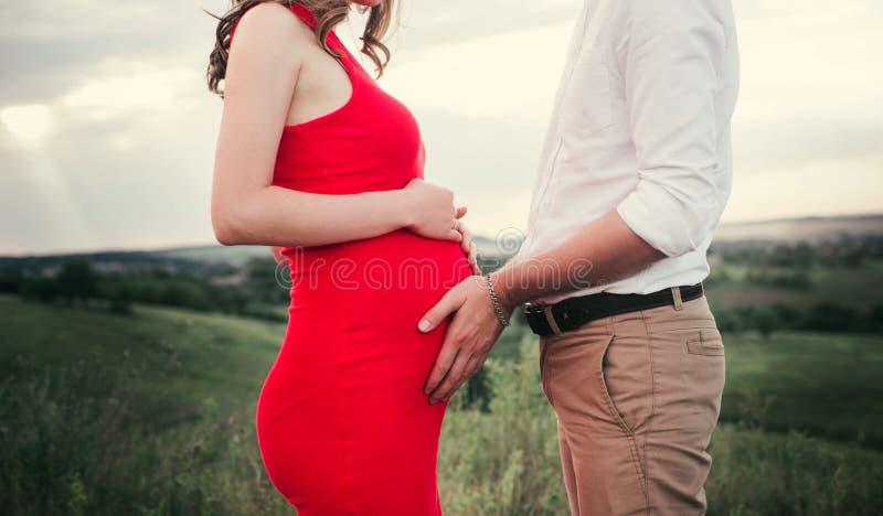 Feche acima das mãos humanas que guardam a barriga grávida, família feliz do close up que espera o bebê, estando na grama verde,  imagem de stock