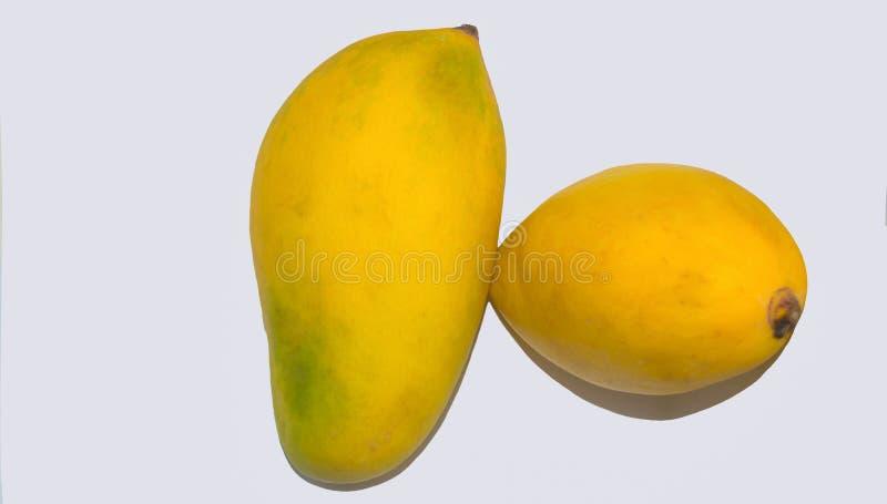 Feche acima das manga maduras frescas isoladas no fundo branco fotos de stock royalty free