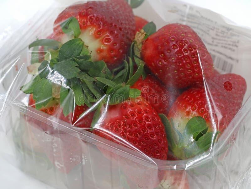 Feche acima das morangos frescas envolvidas com folha no recipiente plástico imagens de stock