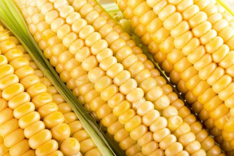 Feche acima das orelhas de milho frescas fotografia de stock