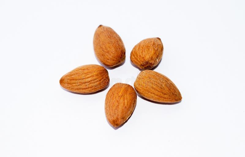 Feche acima das sementes marrons das amêndoas isoladas no fundo branco fotografia de stock royalty free