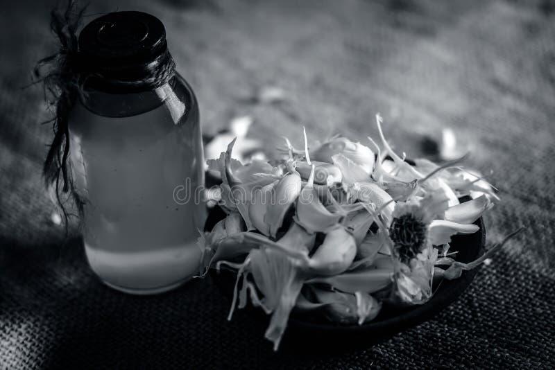 Feche acima de alium sativum, alho com seu óleo em uma garrafa transparente imagem de stock royalty free
