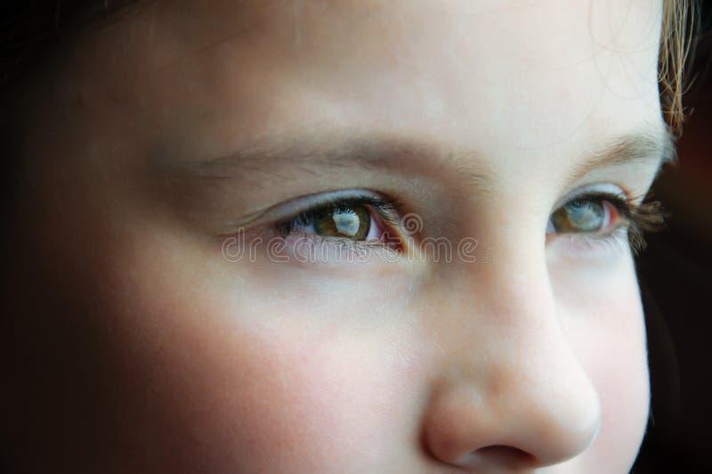 Feche acima de um child& novo x27; olhos de s fotos de stock