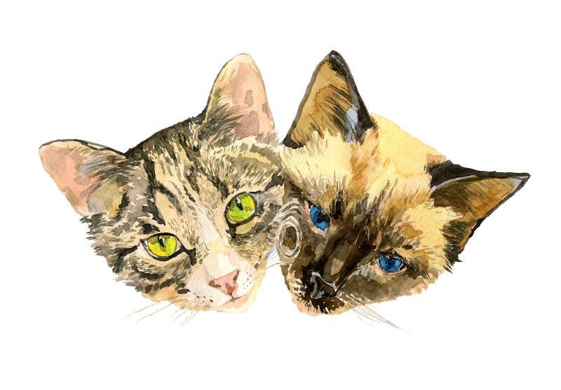 Feche acima de um retrato elegante de dois gatos bonitos ilustração royalty free