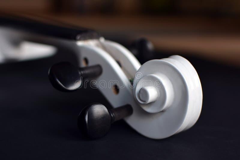 Feche acima de um rolo branco do violino com pegbox preto no fundo obscuro imagens de stock