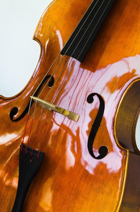 Feche acima de um violoncelo imagem de stock royalty free